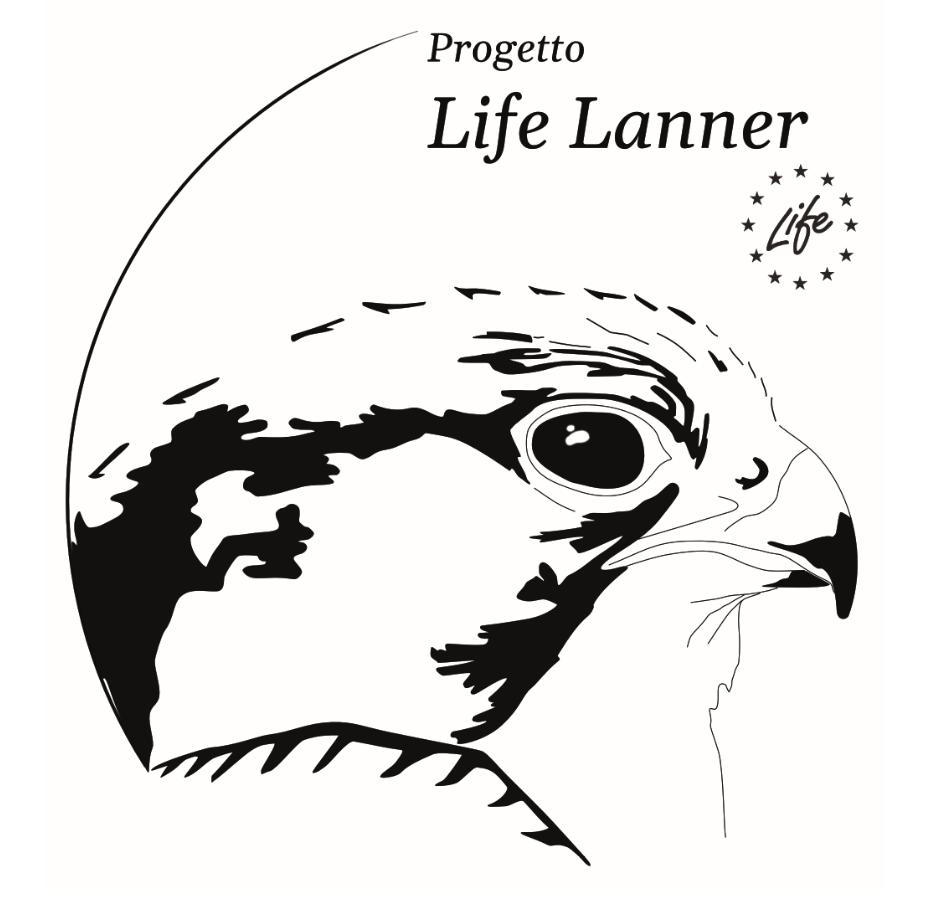 LIFE LANNER