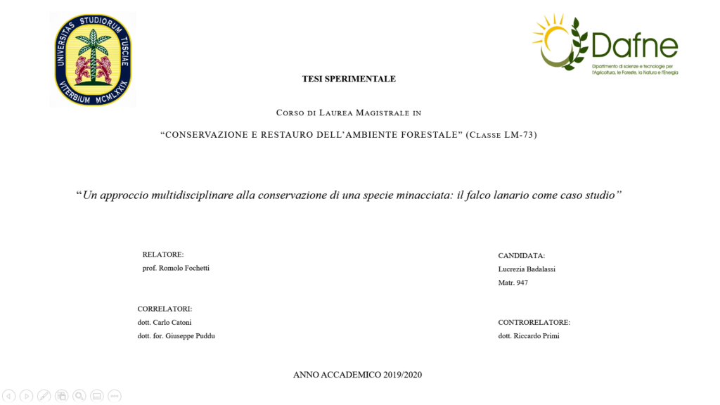 Front page of the master's thesis on lanner falcon conservation